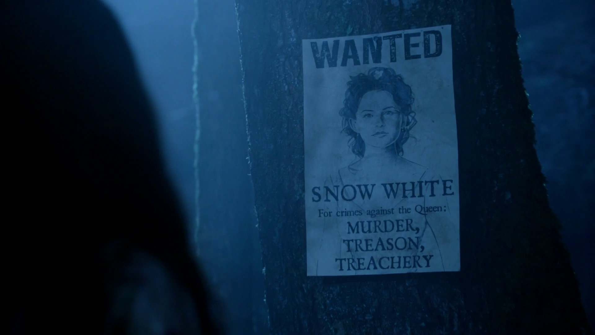 Snow Whites Wanted Poster Child Of The Moon 2x07 Once Once