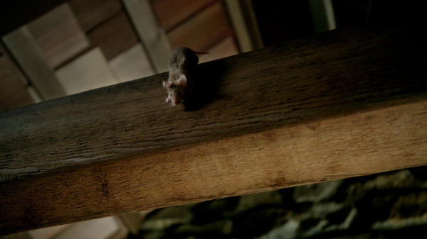 Once Upon a Time 2x04 The Apprentice - The apprentice as a mouse