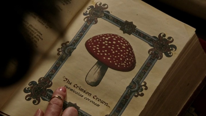 Once Upon a Time 5x03 Siege Perilous - Toadstool Crimson Crown page