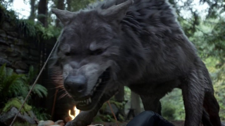 Once Upon a Time 5x09 The Bear King - Wolf Ruby