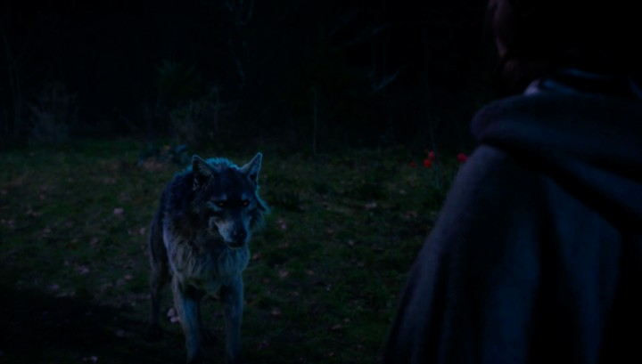Once Upon a Time 5x18 Ruby Slippers - Wolf Ruby asked Dorothy to climb on her back and outrun flying monkey